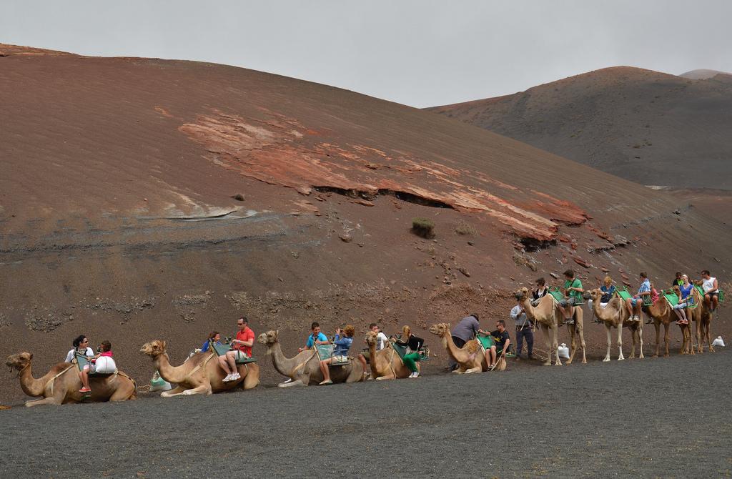 В Национальном Парке Тиманфайя туристы могут насладиться экскурсиями на верблюдах/ Фото: Irene Grassi (sun sand & sea) Flickr / C.C.